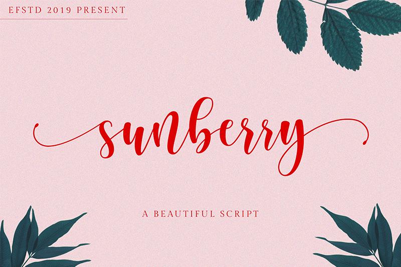 Sunberry Font 鋼筆優雅字型下載
