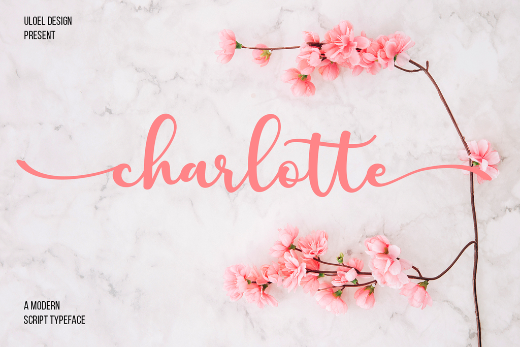 charlotte Font 簽名設計字型下載